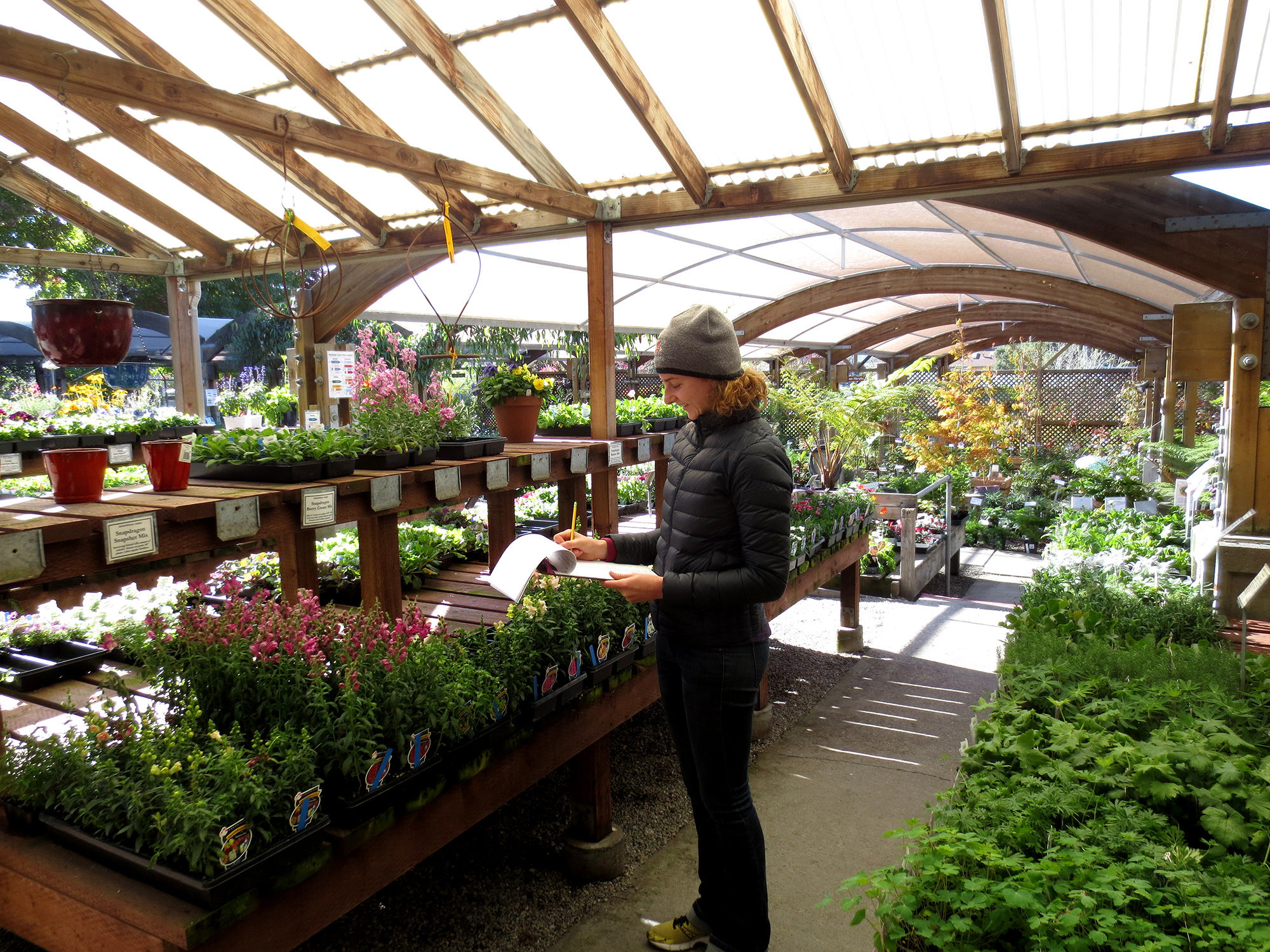 Berkeley Hort employee checking inventory by Helen Krayenhoff